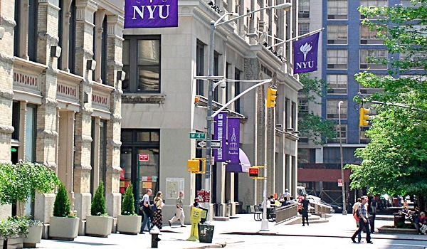 NYU Common Data Set